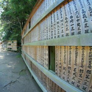 losy szkoly katori Historia Katori Shinto Ryu